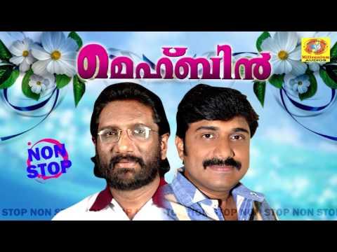 Mehbin | Non Stop Malayalam Songs | Latest Mappilapttukal | Superhit Mappila Album