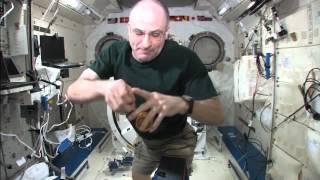 Science off the Sphere: Yo-Yos in Space
