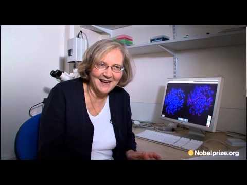 Elizabeth Blackburn, 2009 Nobel Laureate in Physiology or Medicine