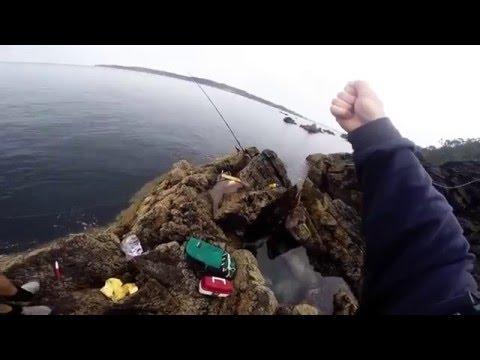 Land Based Fishing - East Coast New Zealand