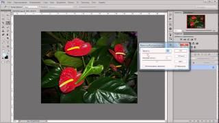 уроки фотошопа (УРОК 28) - Яркость и контрастность