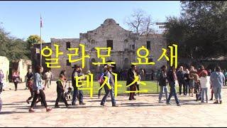 영화 (알라모 요새의 혈투)로 유명한 Alamo Clo…