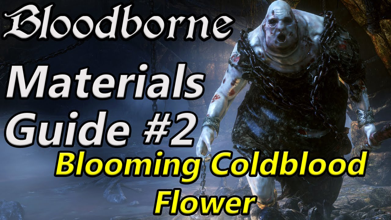 Bloodborne Chalice Material farming #2 Blooming coldblood flower (farming method + chest
