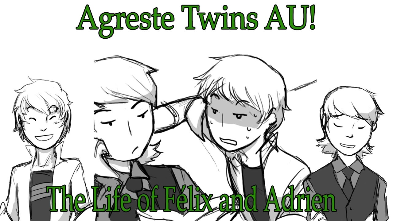 [Miraculous Ladybug Comic Dub] Agreste Twins AU! | The Life of Félix and  Adrien