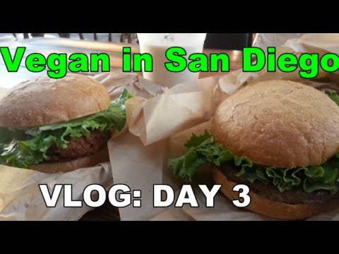 Vegan in San Diego: VLOG Day 3 (& Evolution Vegan Fast Food Joint!)