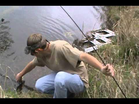 Bass fishin at Lynches River