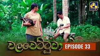 Walawettuwa Episode 33 || ''වලවෙට්ටුවා'' ||  12th August 2021 Thumbnail