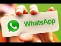 WhatsApp скачать на телефон бесплатно Скачать Ватсап альтернативы Инструкция на русском mp3