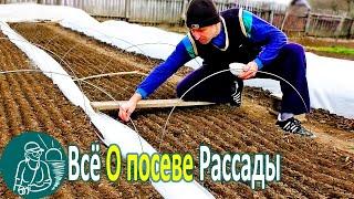☘ Всё о посеве рассады по технологии Гордеевых | #Выращивание рассады в парнике своими руками