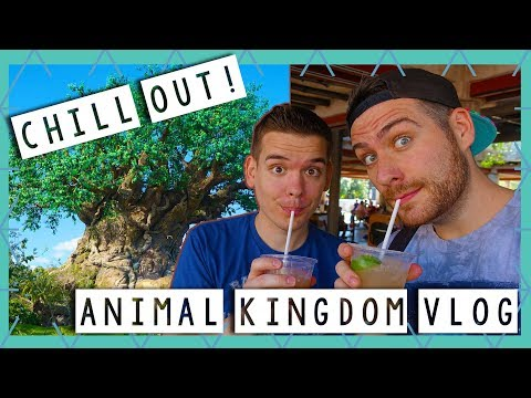 The Most Relaxing Day at Animal Kingdom Ever | Walt Disney World Vlog February 2018