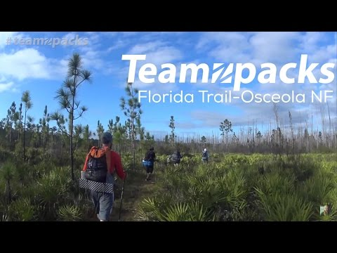 Zpacks - The Florida Trail - Osceola NF