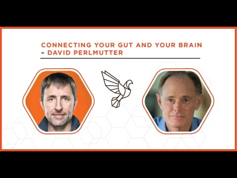 Connecting your Gut and your Brain with David Perlmutter