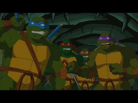 Download Teenage Mutant Ninja Turtles Season 3 Episode 12 - New Blood