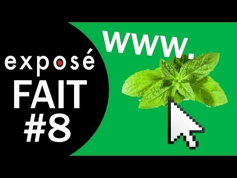 Les tactiques de manipulation de l'industrie du tabac sur l'internet (exposé fait #8)