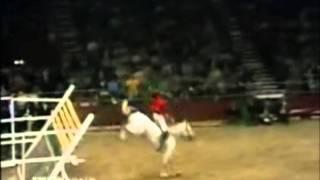 Конный спорт - конкур