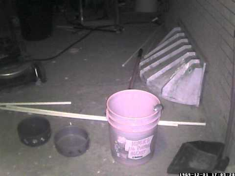 5 Gallon Bucket Mouse Trap 01202012 Youtube