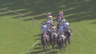 Vidéo de la course PMU PRIX DE BELMONT PARK