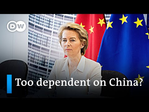 Chinese investments in Europe fuel debate over dependency on China | DW News