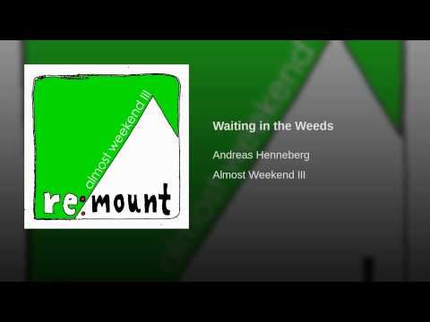 Waiting in the Weeds