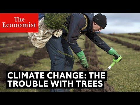climate-change:-the-trouble-with-trees-|-the-economist