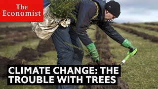 Climate change: the trouble with trees | The Economist