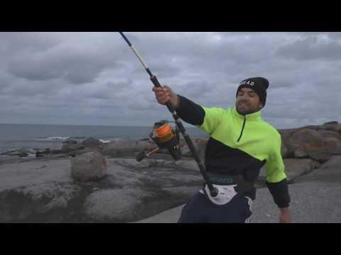 German Fisherman Catches Huge Shark In Australia!