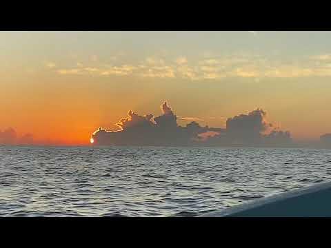 Deep Sea Fishing - Huatulco