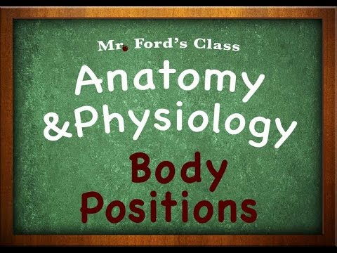 Introduction To Anatomy Physiology: Body Positions (01:06)