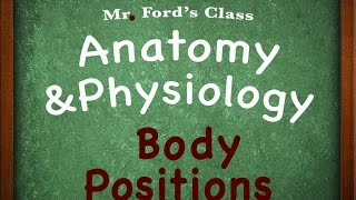 Introduction To Anatomy Physiology : Body Positions