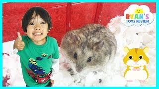Ryan ToysReview first pet Buying Hamster from PetSmart Family Fun Trip animal toys Kids Video