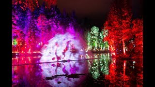 "2018 Enchanted Forest sound & light show ""Of The Wild"" in Faskally Wood, Pitlochry"