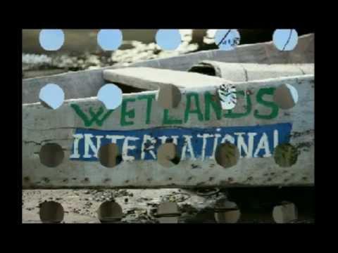 WIA intervention in the Inner Niger Delta