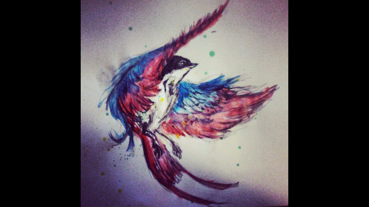 Swallow drawing watercolor youtube for Swallow art tattoo