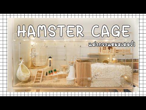 Hamster Cage | แต่งกรงต้อนรับเจ้าหนูแฮมสเตอร์~! | ENG SUB