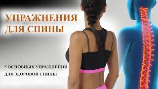 Упражнения для спины. 5 упражнений для спины!
