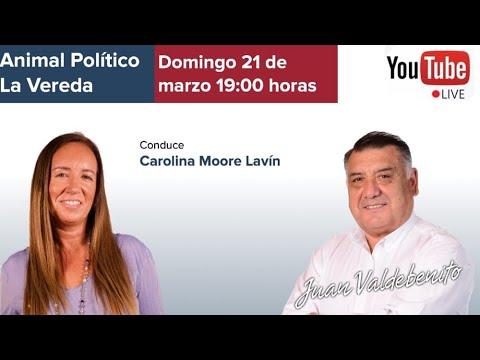 Carolina Moore con Juan Valdebenito en Animal Político