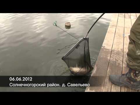 Отчеты о рыбалке коломенский район