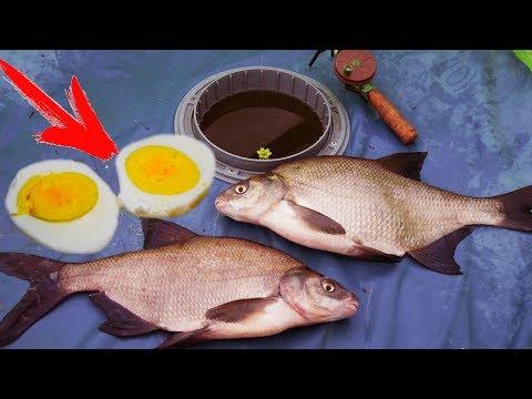 ЛЕЩ НА ЯЙЦО! ОГРОМНЫЕ ЛЕЩИ РВУТ ЛЕСКИ. Лучшая зимняя рыбалка в истории!