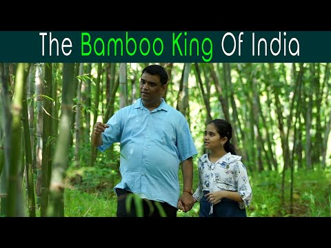 Bamboo King Of India   Anuj Ramatri - An EcoFreak