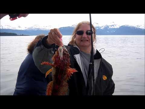 Fishing excursion  in Juneau Alaska
