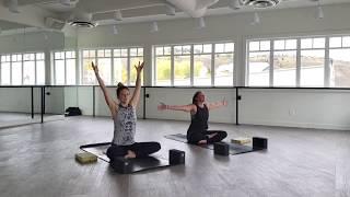 15 Minute Pranayama & Spinal Movement