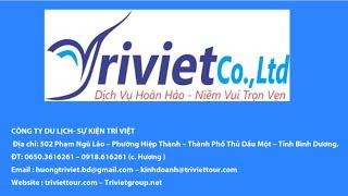 Công ty Du Lịch- Sự Kiện Trí Việt