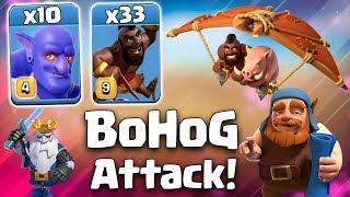 BoHog Strategy 2019! 33 Max Hog + 10 Max Bowler Hog Army Smashing TH12 War 3 Star Attack Strategy