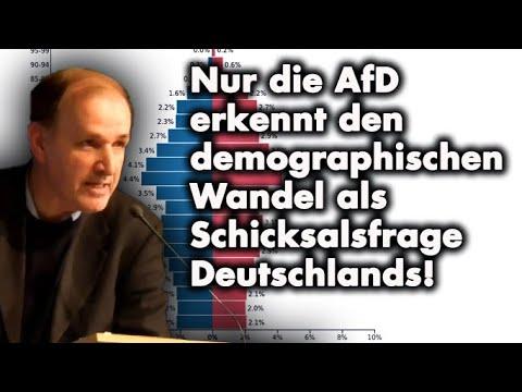 Demographienotstand gefährdet Deutschland existentiell! | Dr. Gottfried Curio