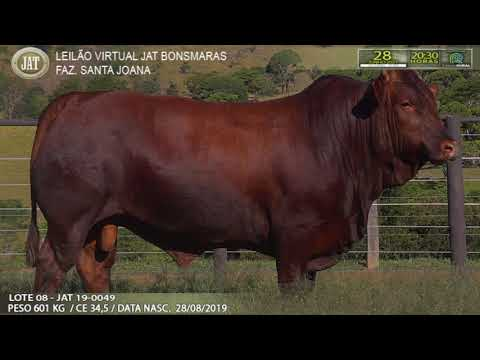 LOTE 008