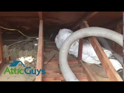 Attic Insulation Removal by Local 5 Star Insulation Contractor - Attic Guys