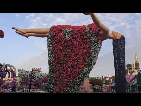 Dubai Miracle Garden|United Arab Emirates|2019-2020