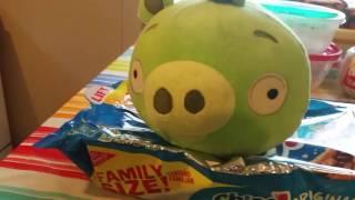 Minon Pig