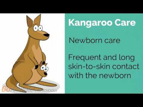 Kangaroo care: Skin-to-skin contact