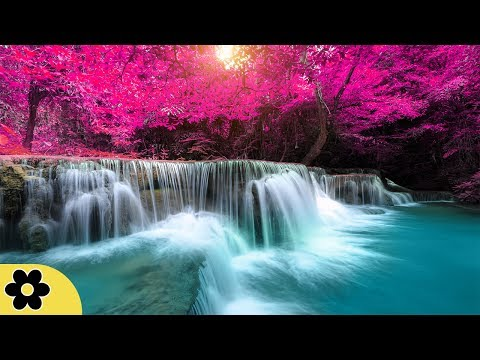 8 Hour Sleep Music, Calm Music for Sleeping, Delta Waves, Insomnia, Relaxing Music, ✿3156C